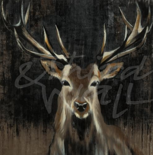 lodge, antlers deer, stag, buck, animal, liz jardine